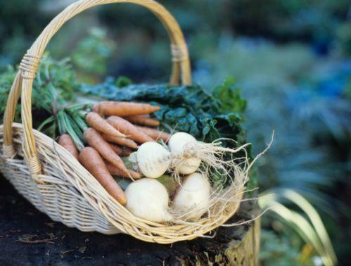 1m2 de potager,20 légumes à cultiver soi même. Exemples de 5 légumes pour petits espaces faciles à cultiver même lorsque l'on manque d'espace (sur une période d'un an) :Rien qu'avec ces 5 fruits et légumes,l'économie annuelle moyenne réalisée sera supérieure à 77 €. Soit plus de la moitié du budget annuel moyen d'un Français.