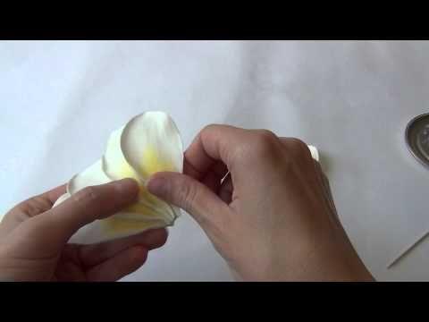 Как создать гавайский цветок из фоамирана