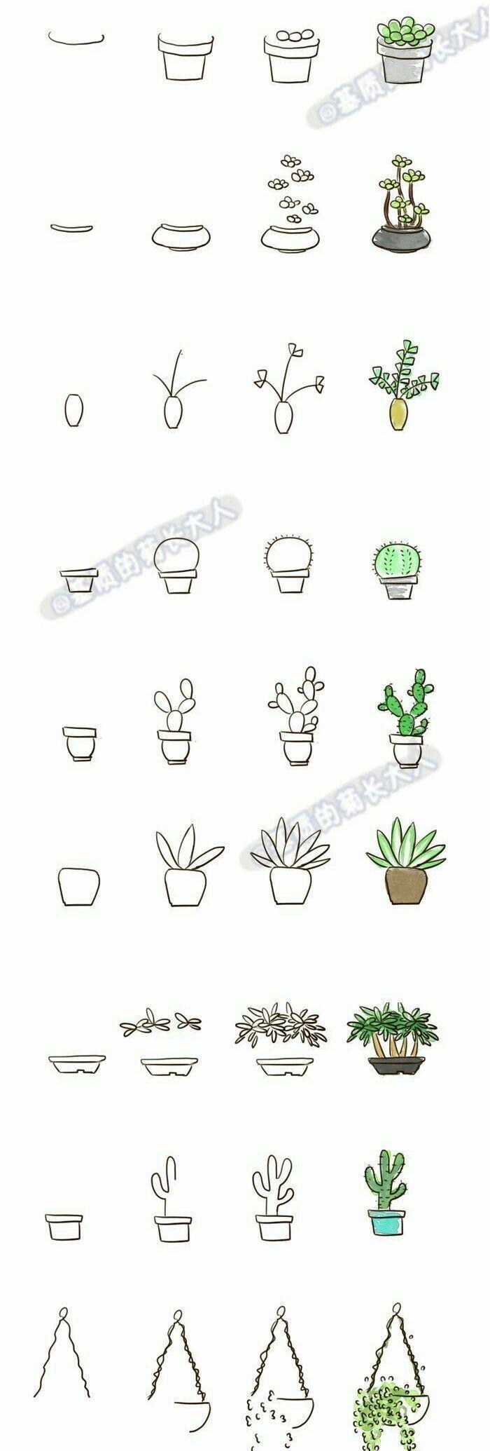 Dessin de griffonnage pour votre journal de balle, cactus succulentes étape par étape #bulletjo
