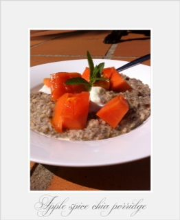 Apple Spice Chia Porridge.