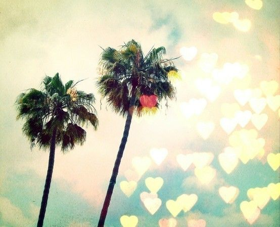 CaliforniaCalifornia Love, California Dreamin, Heart, Palms Trees, Palm Trees, Summer, Places, Beach, Los Angels