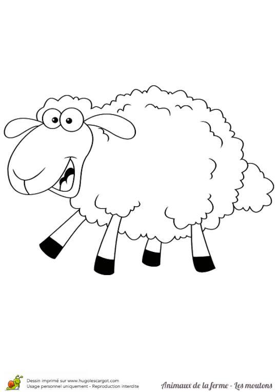 Les 25 meilleures id es de la cat gorie coloriage animaux - Dessin mouton rigolo ...