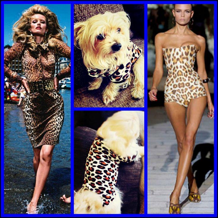 001 Trend alarmı! Leopar 2014 de zirveye oynuyor…köpek minderi köpek yatakları köpek yatağı petshop köpek malzemeleri kopek kıyafetlerı köpek kıyafetleri kopek elbıselerı köpek elbiseleri kopek elbise köpek elbise dog clothes köpek modası kopek modası dog fashıon köpek için kıyafet kopek ıcın elbise köpek için elbise köpek paltosu köpek montu köpek ceketi köpek tişörtü KÖPEK KIYAFETİ KÖPEK ELBİSESİ KÖPEK ÜRÜNLERİ KÖPEK ÜRÜNÜ KÖPEK GİYİM www.kemique.com