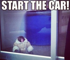 25 best ideas about monkey memes on pinterest funny monkey pictures cute pictures with. Black Bedroom Furniture Sets. Home Design Ideas