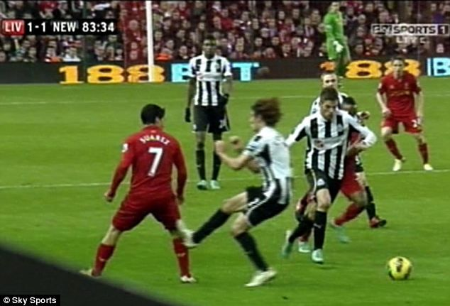 Fabricio Coloccini did not try to hurt Luis Suarez, insists Newcastle boss Alan Pardew   Mail Online