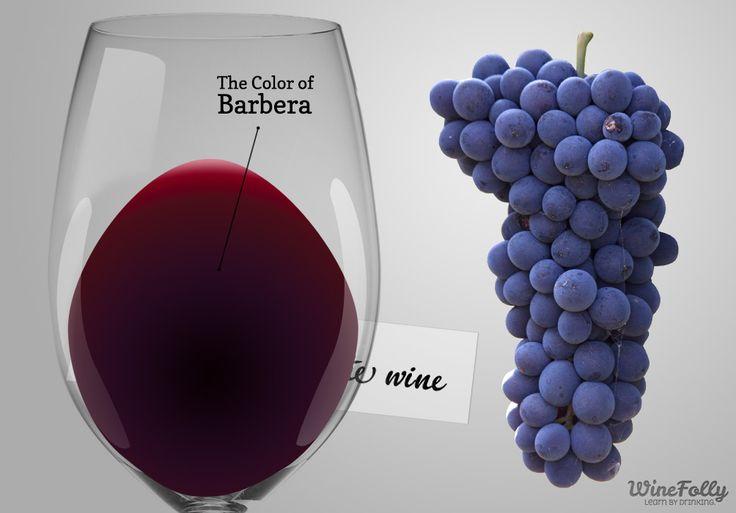 Barbera wine from Piemonte, Italy