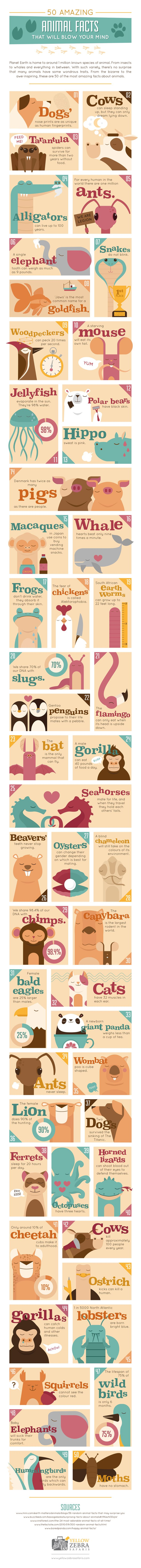 50 Amazing Animal Facts That Will Blow Your Mind #Infographic #Animals #Facts