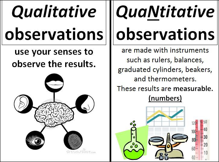 """scientific method and participant observation It is typically divided into naturalistic (or """"nonparticipant"""") observation, and participant observation cases studies and archival research are special types of ."""