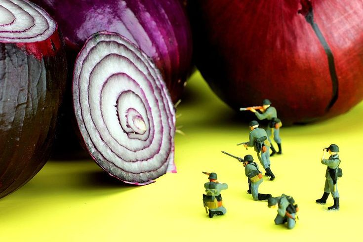 Military Photograph - Military Training With Red Onion Little People On Food by Paul Ge