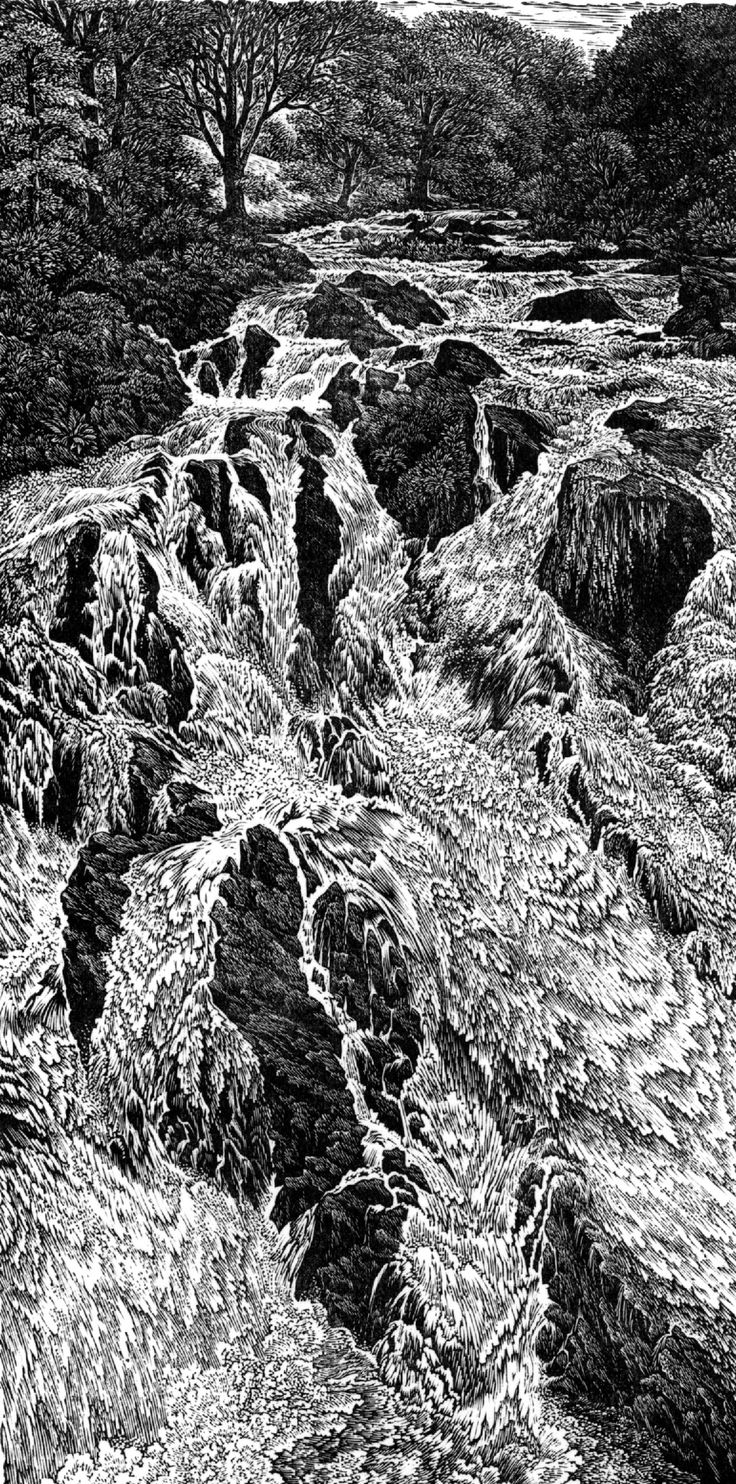 """Swallow Falls"" by Sue Scullard Love this wood engraving and it is only 100 x 200 mm ......4 x 8 "" Imagine those fine lines. S"
