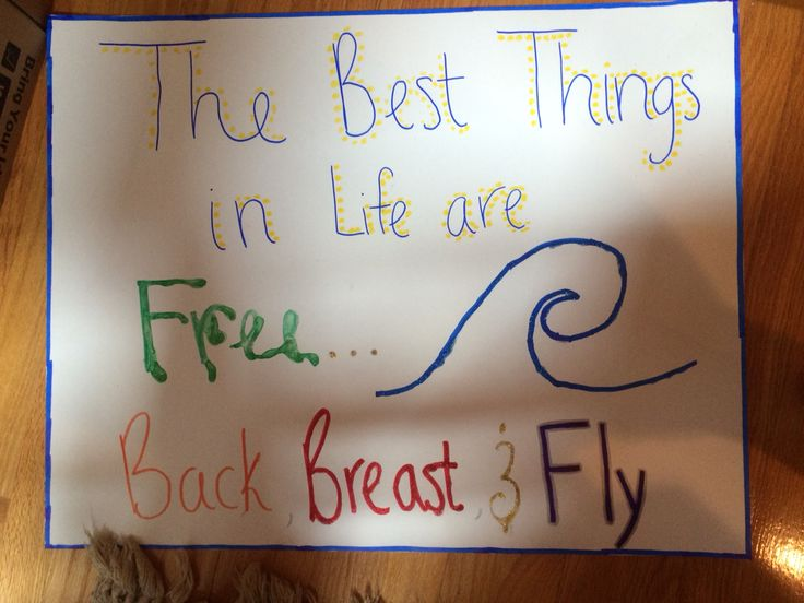 """For senior night, posters with cute swimming quotes """"The best things in life are free... Back breast and fly"""""""