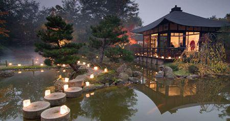 Japanese Bonsai garden, Berlin