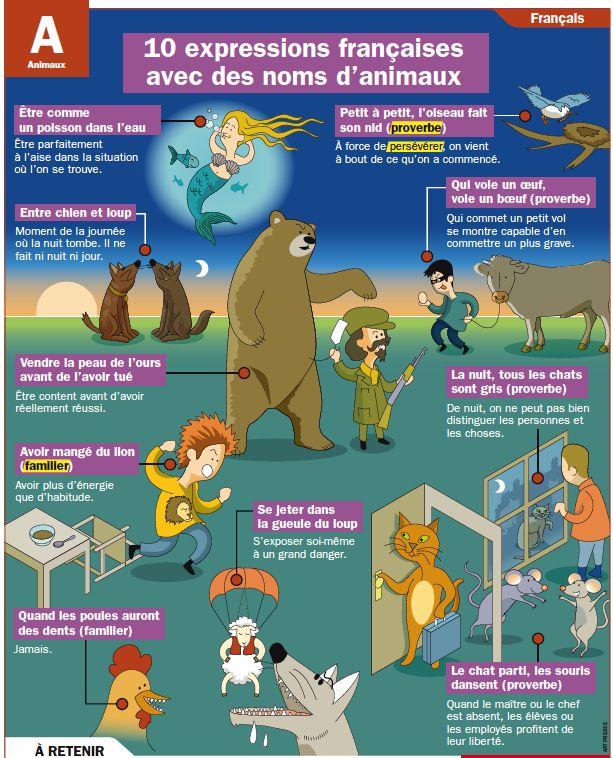 10 expressions avec des animaux