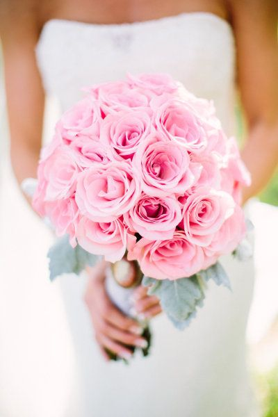 pink roses + dusty miller - Paige Lowe Photography