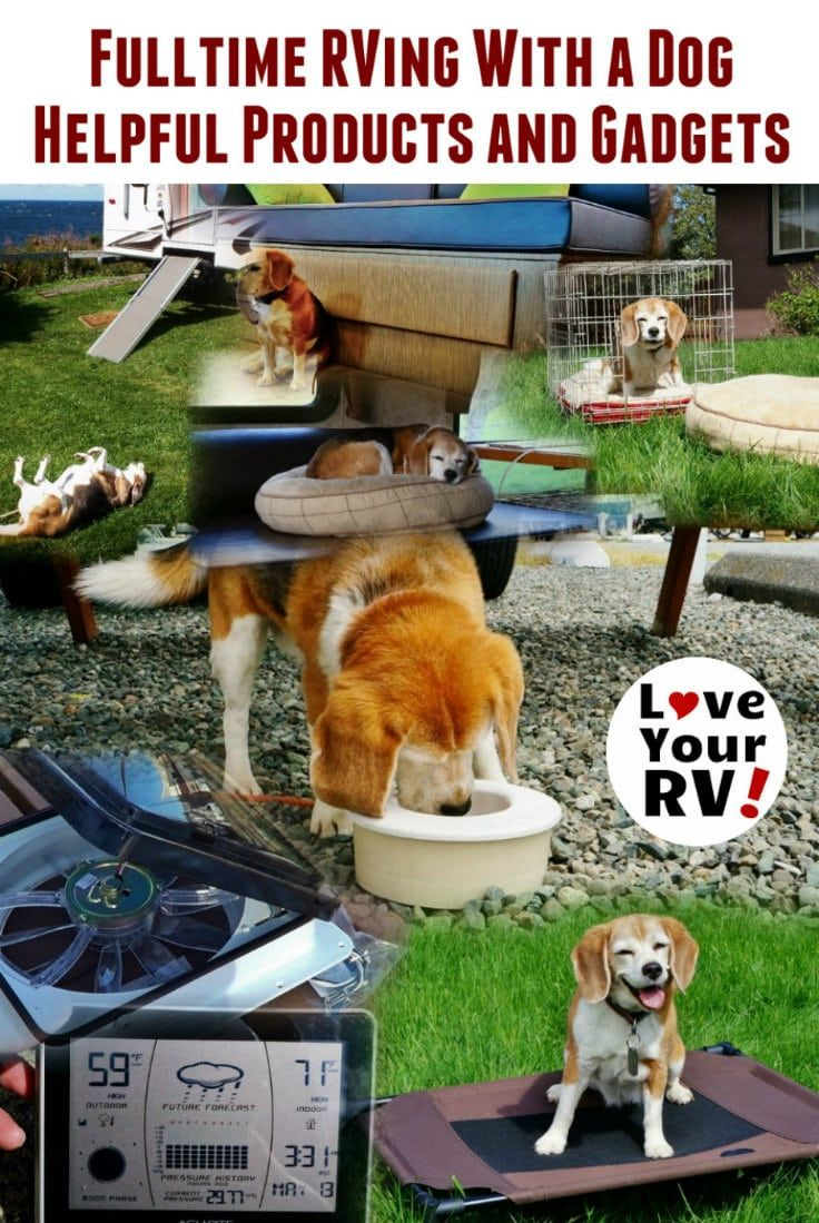 Fulltime RVing With a Dog - Helpful Products and Gadgets by the Love Your RV blog - http://www.loveyourrv.com/fulltime-rving-dog-helpful-products-gadgets/