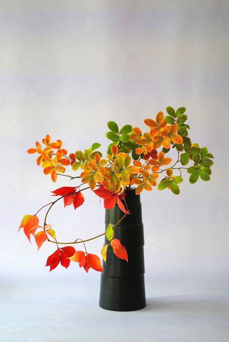 Ikebana.              par thai thomas mai van  automne                                          … …