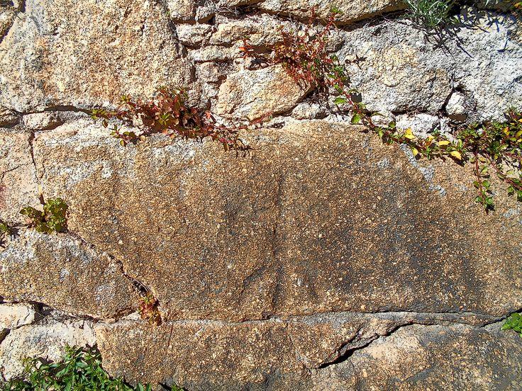 Petroglifo. Su antigüedad y significado  aún se discute.