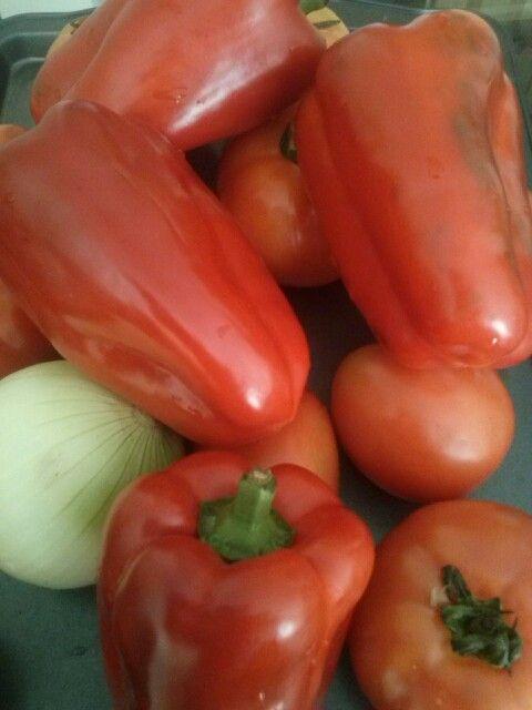 #pimenton #tomate y #cebolla sin falta en casita