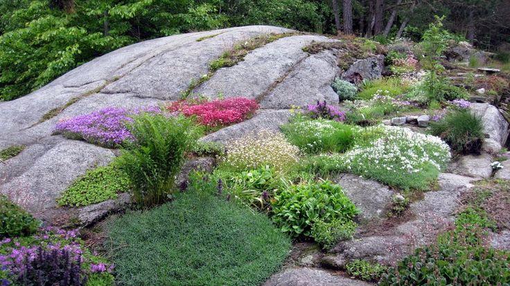 9 best mountain landscaping images on pinterest landscape design mountain and garden ideas - Mountain garden landscaping ideas ...