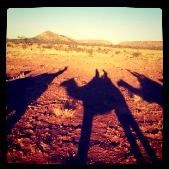 Camel ride, Alice Springs