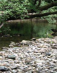 Une pause sur le bord de la rivière à Kinnear's Mills