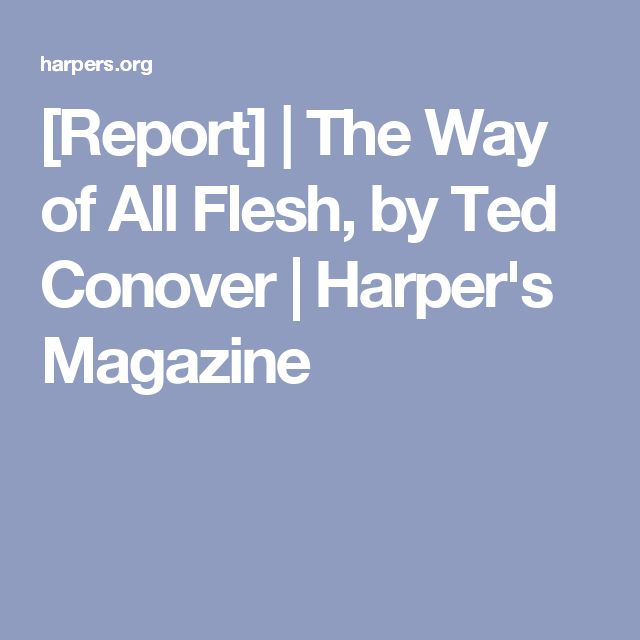 [Report]   The Way of All Flesh, by Ted Conover   Harper's Magazine