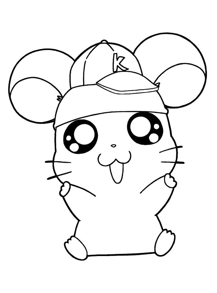 Cute Hamster With Hat Coloring Pages Animal Coloring Pages Halloween Coloring Pages Dog Coloring Page