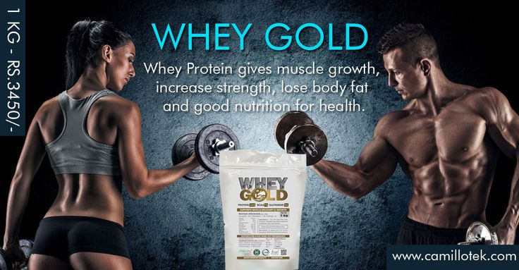 Best Whey Protein Powder, Whey Protein Supplements, Bodybuilding Supplements, whey protein isolate, whey protein concentrate, whey Protein Complex, better whey, Whey Protein Shake mix, whey protein nutrition, 100% Whey Protein Powde, Optimum Nutrition and Pure Whey manufacturer, supplier, dealer in Chennai, India. Whey Protein gives muscle growth, increase strength, lose body fat and good nutrition for health. buy now :  https://www.payumoney.com/store/buy/camillotek004