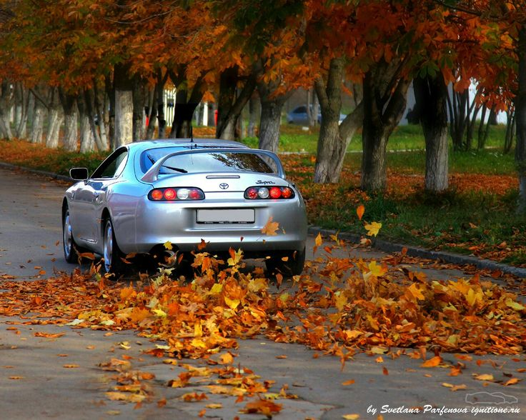 Import Cars, Japanese Cars, Nice Cars, Toyota Supra, Muscle Cars, Jdm, Cool  Cars, Japanese Domestic Market