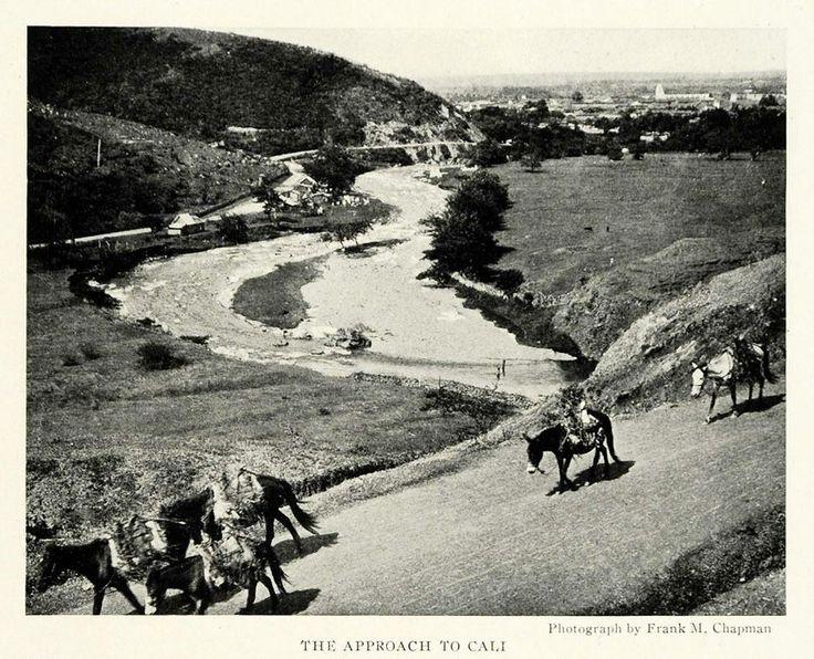 Rio Cali