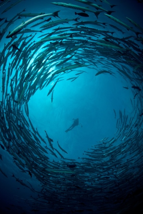 Deep sea diving...