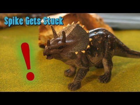Dinosaurs Live In Alaska - Spike Gets Stuck: Family Friendly YouTube Channel for Kids! - Dinosaurs Live in Alaska! 2017 - Dino toys playing: T-Rex, Triceratops, Brachiosaurus, Brontosaurus. Tyrannosaurus