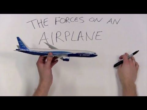 The Forces on an Airplane:  One of many videos produced by MIT for 1st - 12th grade science.