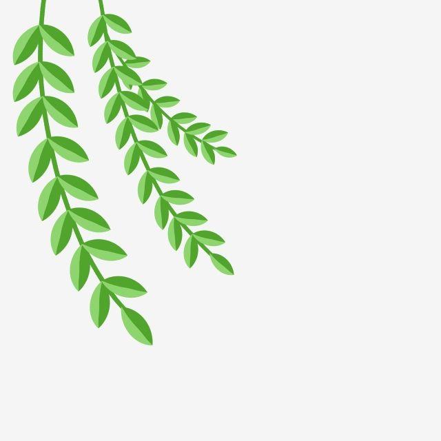 Gambar Kartun Tanaman Merambat Hijau Tanaman Hijau Anyaman Willow Cabang Dan Cabang Png Transparan Clipart Dan File Psd Untuk Unduh Gratis Tanaman Rambat Tanaman Hijau Menanam