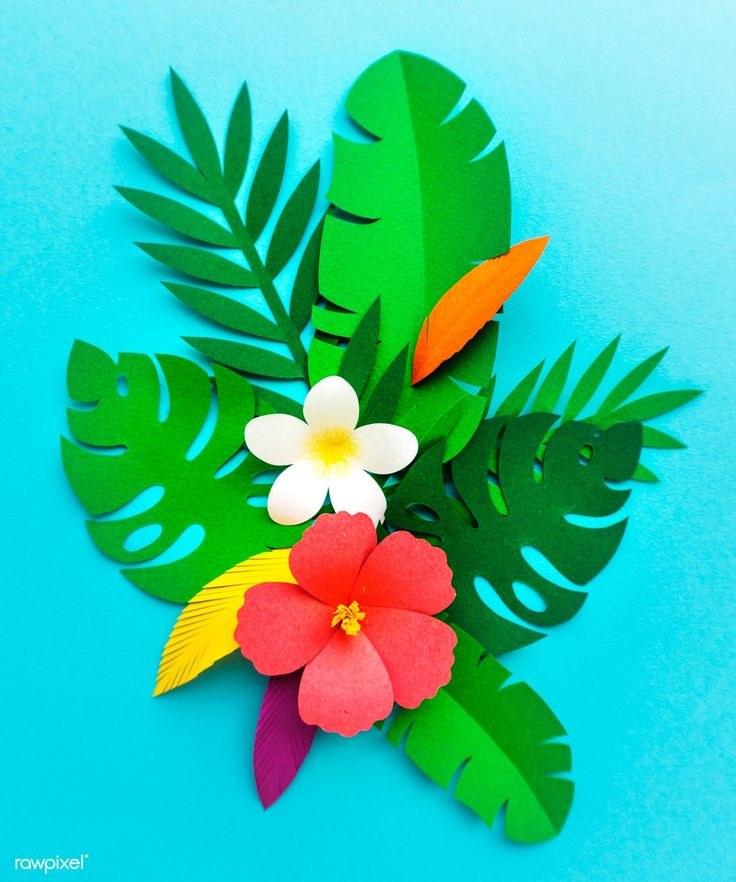 Obtain premium picture about papercraft, artwork and background 261885