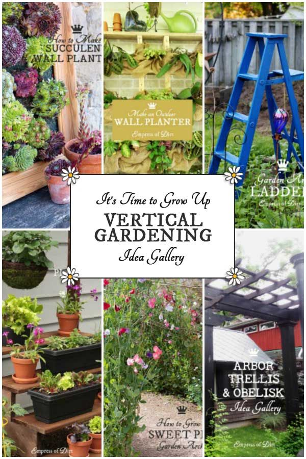 Top 25 ideas about gardening zones on pinterest for Limited space gardening ideas