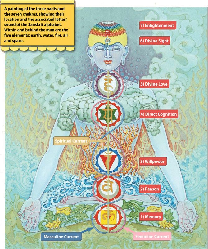 Chakras Explained in Depth. http://www.timewheel.net/Tome-The-Chakras-Explained-In-Depth