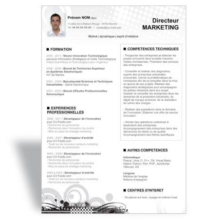 Modèle CV Word Directeur Marketing | Modèle cv word ...