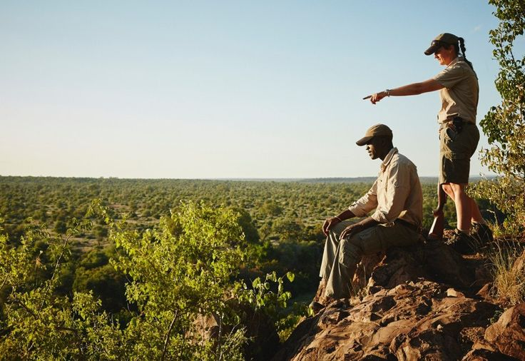 Walking safaris are an incredible way to experience the bush up close and personal.
