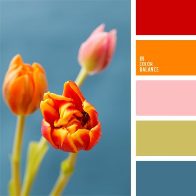 436 Best Images About Color Coordination Ideas On