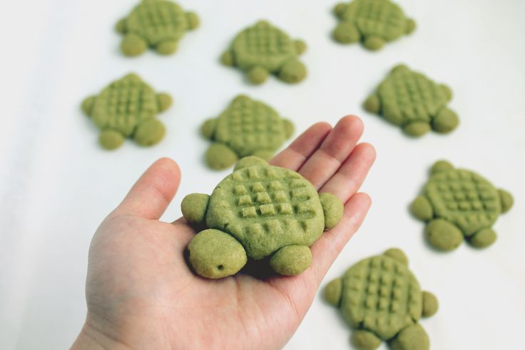 Matcha Turtle Cookies by Samantha, @ elleventy on Instagram. Made with Aiya's Cooking Grade Matcha. | aiya-america.com | #matcha #dessert