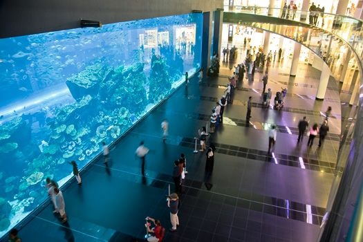 #DidYouKnow the fact about #Dubai that some of the world's tallest and biggest structures are situated here. Biggest #mall, tallest #hotel, second largest man-made marina, and the world's largest #aquarium are located in Dubai.  www.akoupon.com