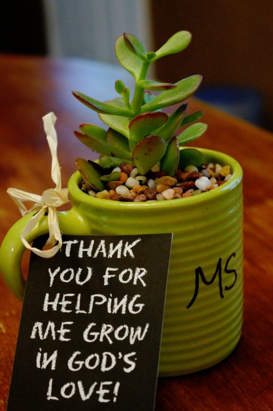 Thank you for helping me grow... Plant in a mug as a teacher's gift.