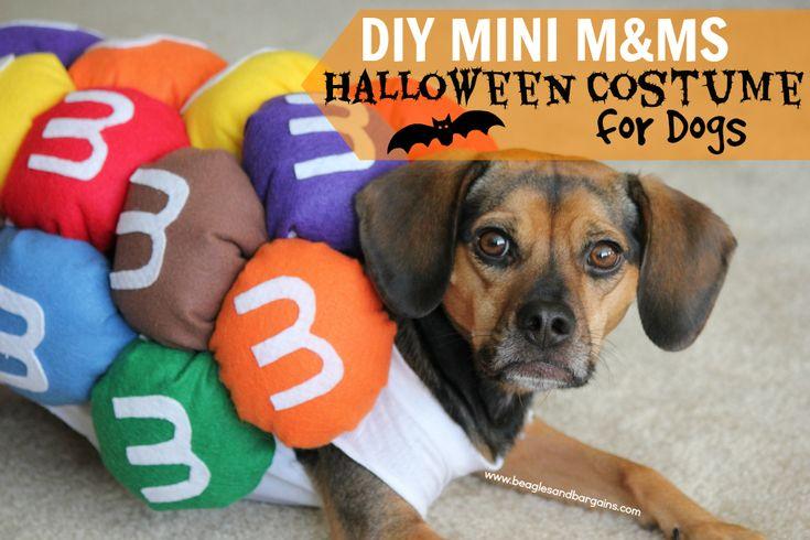 Super Easy DIY Mini M&Ms Halloween Costume for Dogs | http://www.beaglesandbargains.com/easy-diy-halloween-costume-dogs/