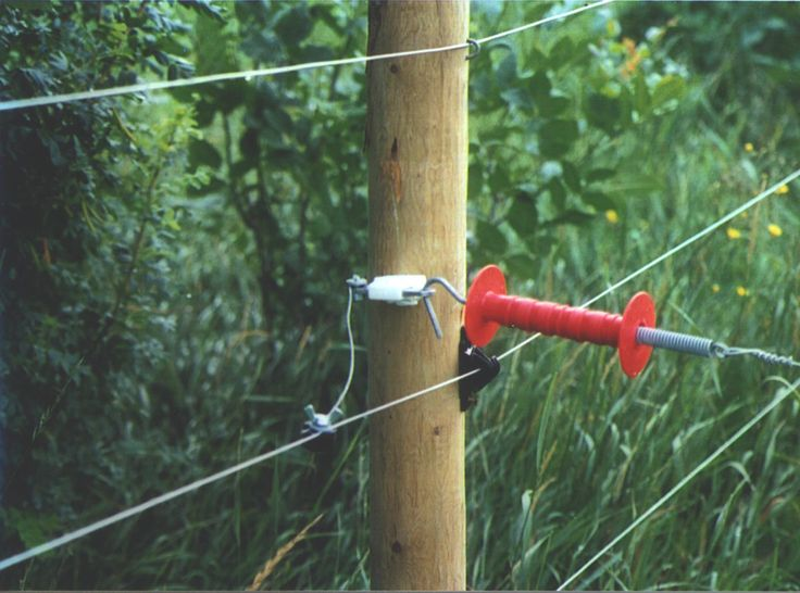 Electric Fence & Fencing Supplies News and Information | Buy Here ...