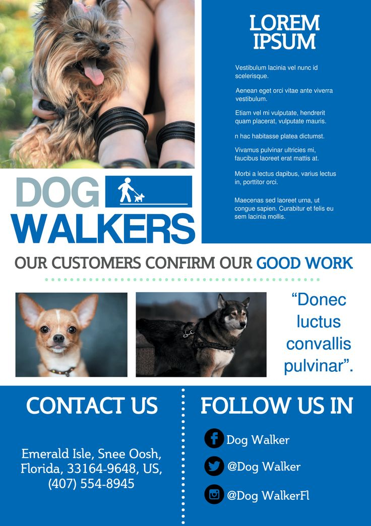 Best 25+ Dog walker flyer ideas on Pinterest Dog walking flyer - emerald flyer template