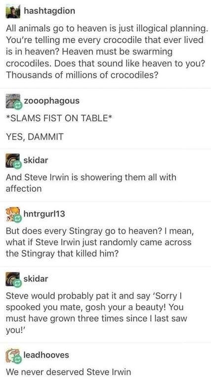 I LOVE STEVE IRWIN