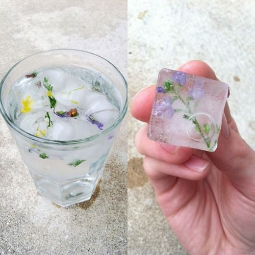 a refreshing glass of water with nature's ice cubes