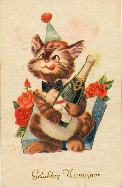 Dutch Happy New Year Year cat postcard