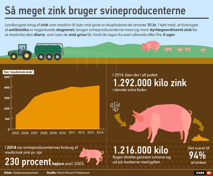 GRAFIK: Så meget zink bruger svinebønderne   Nyheder   DR